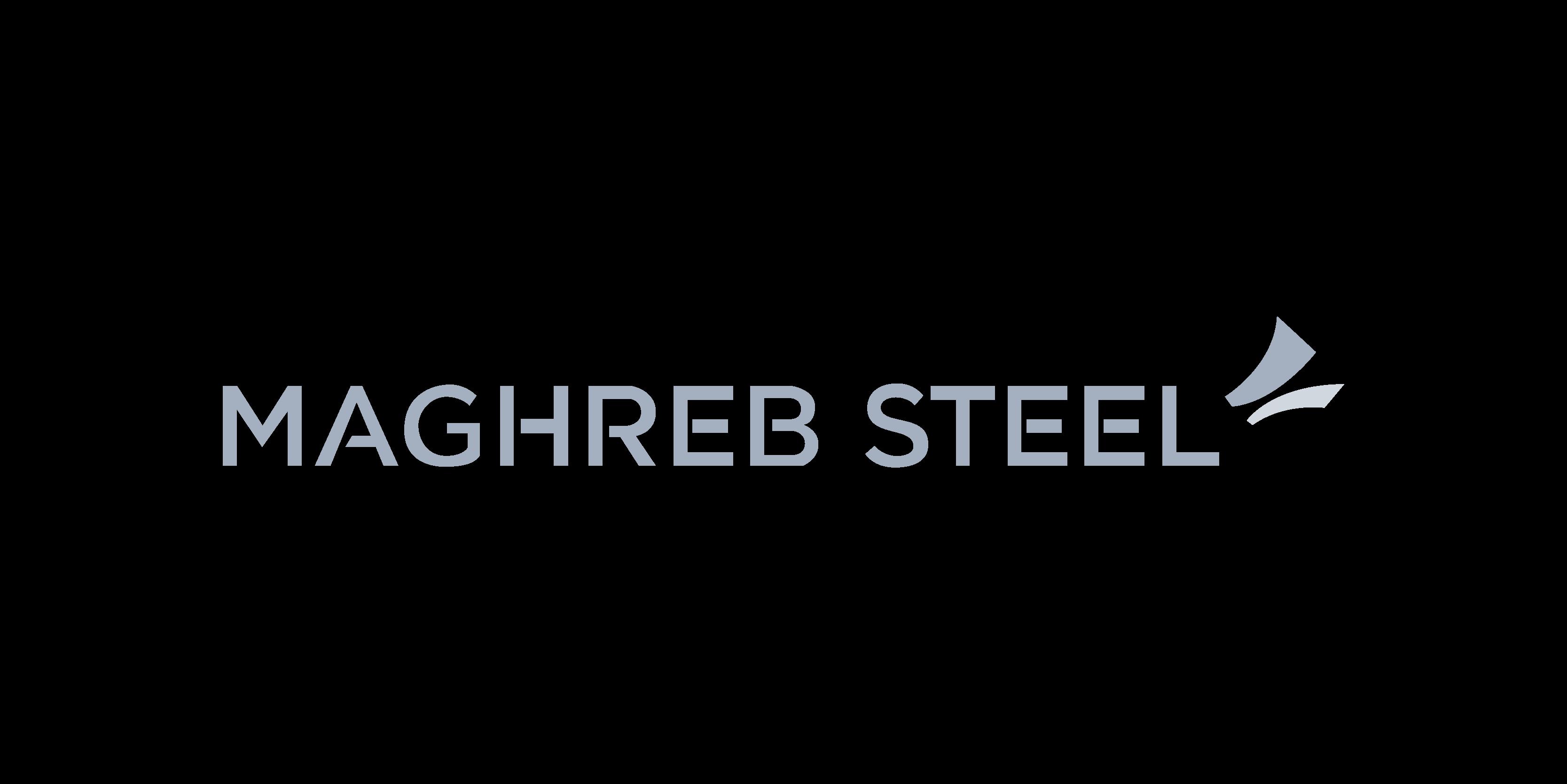 Logo Maghreb Steel